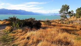Colorful Lake tekapo in new zeeland. Turquoise Lake tekapo in new zeeland colorful landscape royalty free stock image