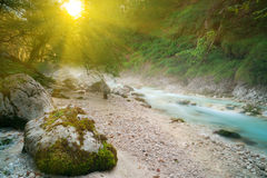 Turquoise mountain brook in sunrise light. Foggy turquoise mountain brook in sunrise light Stock Photos