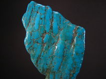 Turquoise Stock Images
