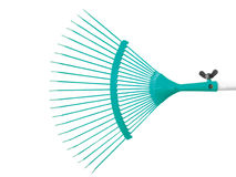 Turquoise raker Stock Photo