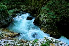 Turquoise rapids of Radovna river in Vintgar Gorge Stock Photo