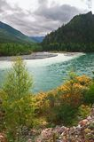 Turquoise river and mountains. Altay. Russia Stock Photos