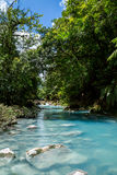 The turquoise river Rio Celeste. In Costa Rica in the jungle Royalty Free Stock Photos