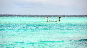 Turquoise sea in Maldives Royalty Free Stock Images