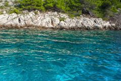 Turquoise sea water and rocky coastline. Beautiful turquoise sea surface and rocky coastline with aleppo pine trees in the background stock photos