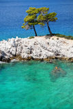 Turquoise Sea Waters at Skopelos Island Royalty Free Stock Photography