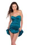 Turquoise sheath Stock Images