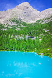 Turquoise Sorapis Lake  in Cortina d'Ampezzo, with Dolomite Moun. Tains and Forest - Sorapis Circuit, Dolomites, Italy, Europe Stock Images