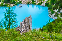 Turquoise Sorapis Lake  in Cortina d'Ampezzo, with Dolomite Moun. Tains and Forest - Sorapis Circuit, Dolomites, Italy, Europe Royalty Free Stock Images