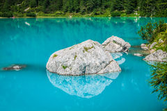 Turquoise Sorapis Lake with Pine Trees and Dolomite Mountains in Stock Image