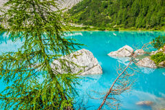 Turquoise Sorapis Lake with Pine Trees and Dolomite Mountains in Royalty Free Stock Images