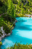 Turquoise Sorapis Lake with Pine Trees and Dolomite Mountains in Stock Images