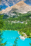 Turquoise Sorapis Lake with Pine Trees and Dolomite Mountains in. The Back - Sorapis Circuit, Dolomites, Italy, Europe stock photos