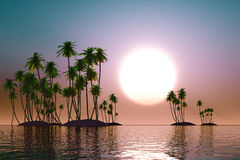 Turquoise sunset. Over coconut tropic islands stock illustration