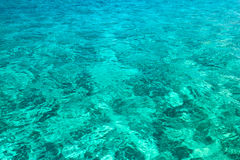 Turquoise surface of the sea Stock Photography