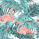 Turquoise tropical jungle leaves pink flamingos. Blue green turquoise tropical jungle rainforest palm tree leaves. Pink exotic flamingo birds couple. Bright red Stock Image