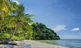 Turquoise Tropical Paradise Island in Borneo, Malaysia Stock Photos