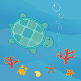 Turquoise turtle. A turquoise sea-turtle swimming in the current Stock Photo