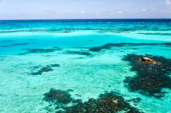 Turquoise Water Royalty Free Stock Photo