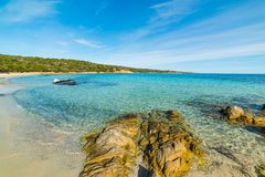 Turquoise water in Andreani cove in Caprera island. Sardinia, Italy Royalty Free Stock Photo