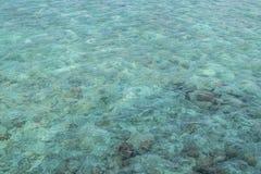 Turquoise water background. Maldives royalty free stock image