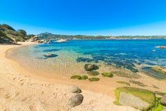 Turquoise water in Cala dei Ginepri Royalty Free Stock Image