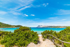 Turquoise water in Capo Coda Cavallo Royalty Free Stock Images