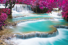 Turquoise water of Kuang Si waterfall Royalty Free Stock Images