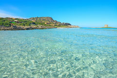 Turquoise water in La Pelosa beach. Sardinia Royalty Free Stock Photography