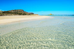 Turquoise water in La Pelosa. Beach, Sardinia Royalty Free Stock Photography