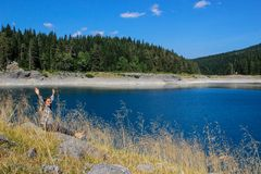 Turquoise water of the lake, pine forest and mountains. Stunning background with nature girl tourist sitting on the beach. Paradise views of the national park stock images