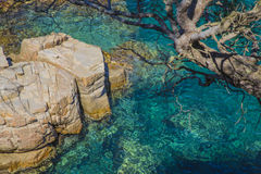Turquoise water on rocks coast on a Mediterranean beach Royalty Free Stock Photography