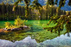 Turquoise water and scene of trees and Lake Stock Photography