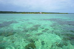 Turquoise water with some corals below sea surface Royalty Free Stock Images