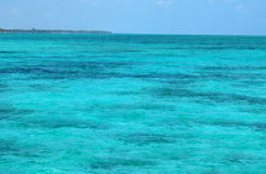 Turquoise  water surface Stock Image