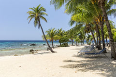 Turquoise Waters on Roatan Beach Royalty Free Stock Image