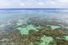 Turquoise Waters and Roatan Reef Stock Photo