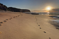 Turrimetta strandsoluppgång med sundoggloria Arkivfoto