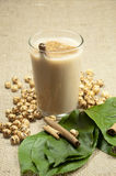 Turskish drink Boza. And chickpea Royalty Free Stock Photo