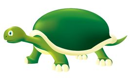 Turtle. Cute turtle, layered illustration for easy editing Royalty Free Stock Photo