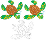 Turtle. The isolated clip-arts (over white) of the swimming sea turtle in three versions: black-and-white and color drawings with color and black contours vector illustration