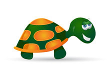 Turtle. Illustration of beautiful handsome turtle Stock Photos