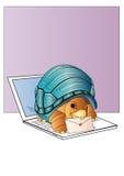 Turtle. Cartoon  turtle  on white background Stock Image