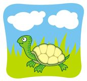 Turtle. Cartoon of happy turtle walking in the grass Royalty Free Stock Photos