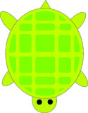 Turtle. Green turtle over a white background Royalty Free Stock Photography