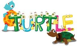 Turtle. Illustration of turtle alphabet on white background stock illustration