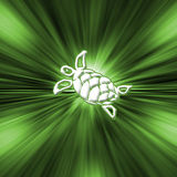 Turtle. Green Turtle - Starburst Royalty Free Stock Photos