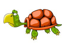 Turtle stock illustration