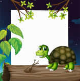 A turtle above the wood with an empty board at the back Royalty Free Stock Photo