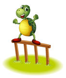 A turtle above a wooden post Royalty Free Stock Photos